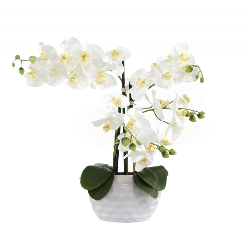 jetzt kaufen kunstpflanze orchidee xl mit keramiktopf ca 53 cm hoch wei der daro deko. Black Bedroom Furniture Sets. Home Design Ideas