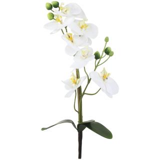 Jetzt Kaufen Orchideen Zweig Kunstlich Der Daro Deko Online Shop